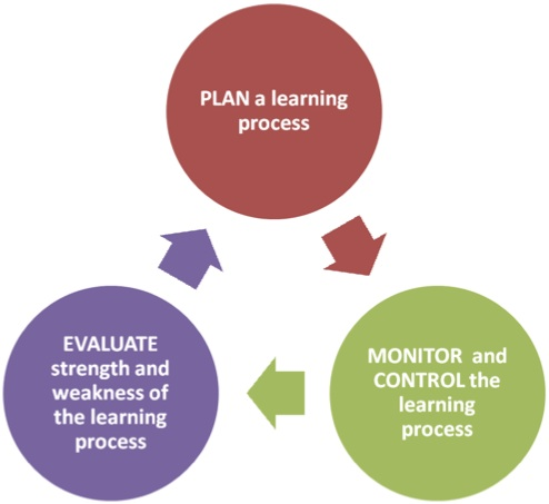 an analysis of inquisitive and self directed learning in young children International journal of self-directed learning, volume 3  exercise control over self-selected learning endeavors this analysis of their voices revealed that.